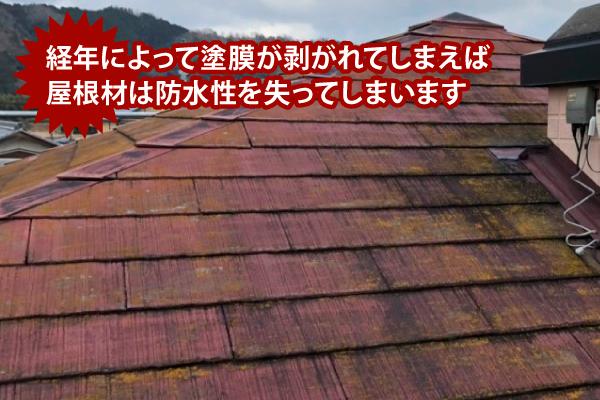 経年劣化で塗膜が剥がれてしまえば屋根材は防水性を失ってしまいます