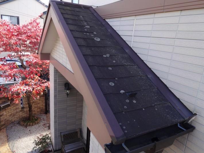 コケが発生した屋根