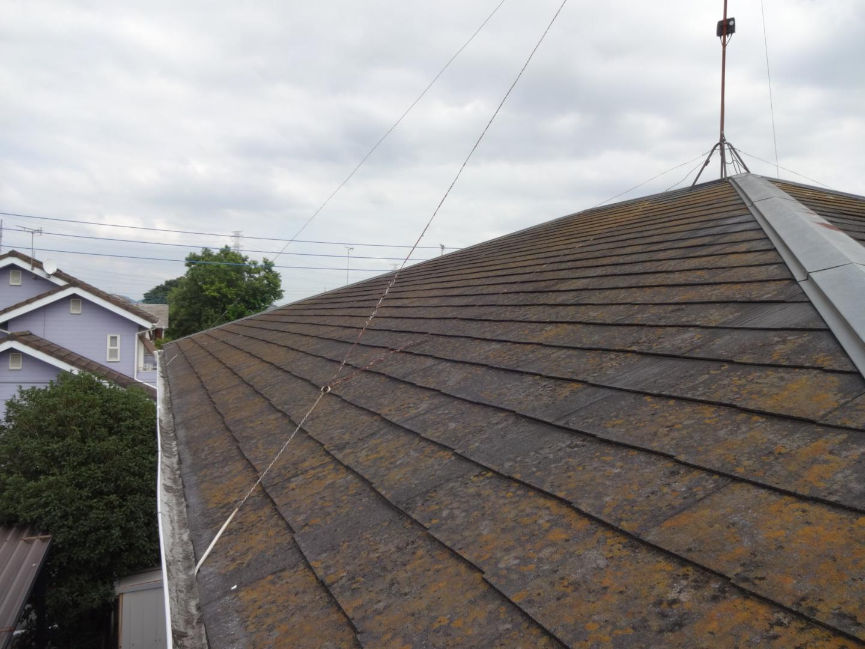 屋根のコケの発生
