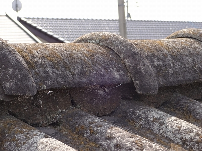 屋根 調査